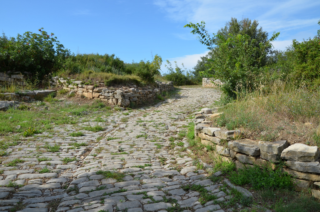 The main artery of the settlement was a paved road, dug out from deep ruts. Buildings (houses and shops) were built all along the sides of the road.