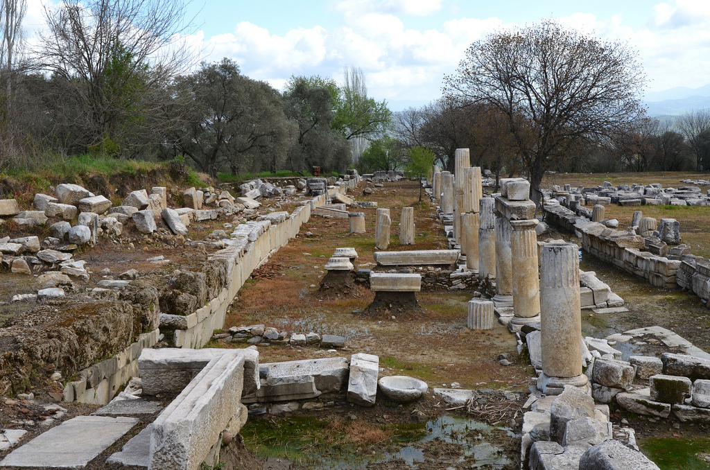The precinct surrounding the temple was ca. 150 by 135 m. It was enclosed by a stoa in the Doric order, the S side of which was raised on a flight of 11 steps, with a staircase at the W end