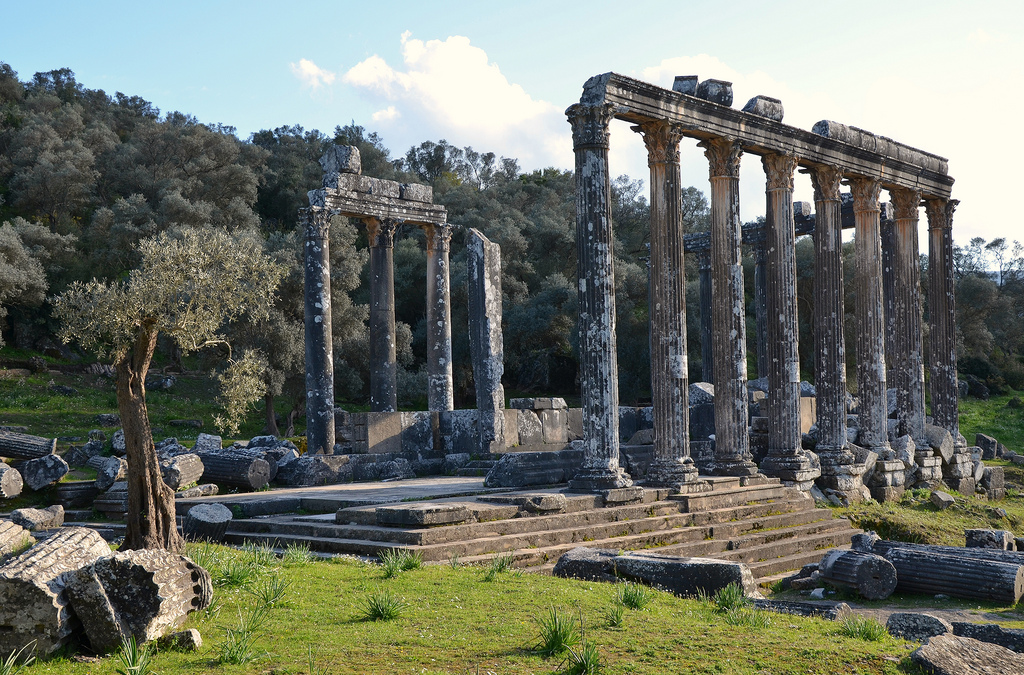 Temple of Zeus Lepsynus, built on the site of an earlier Carian temple, 2nd century AD, Euromos, Turkey