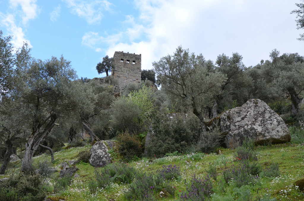 The Two-storey Hellenistic watchtower.