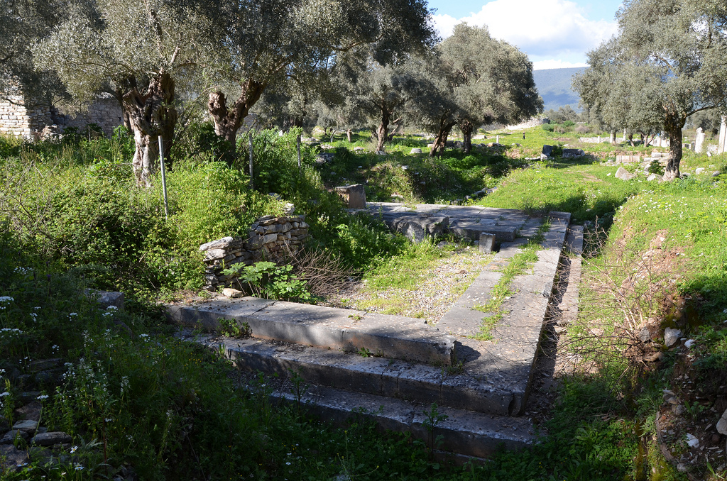 The Sanctuary of Artemis Astias.