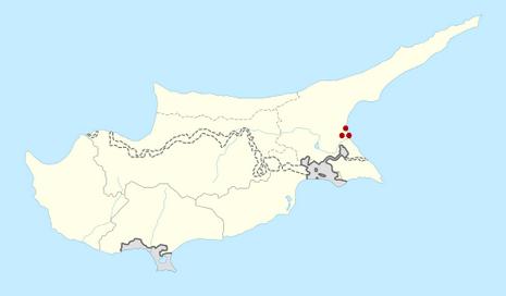 Salamis