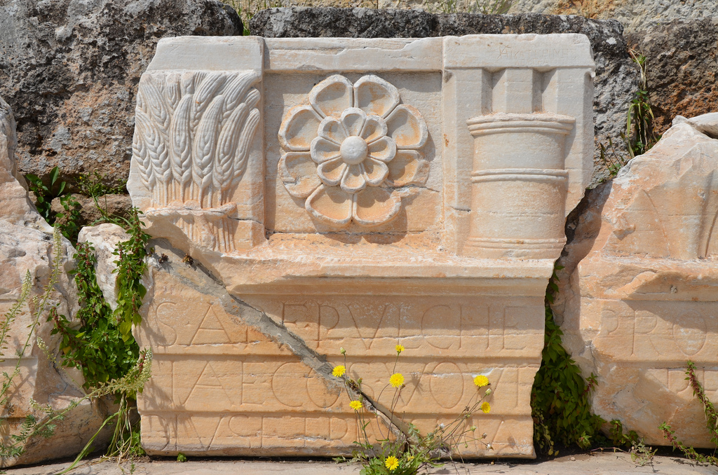 The entablature of the Lesser Propylaea had an Ionic architrave, on which is cut the Latin dedicatory inscription, and a frieze of triglyphs and metopes embellished with cists, bukrania, and stylized double poppies.