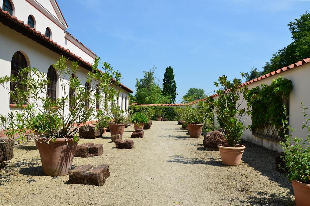 The plant garden.