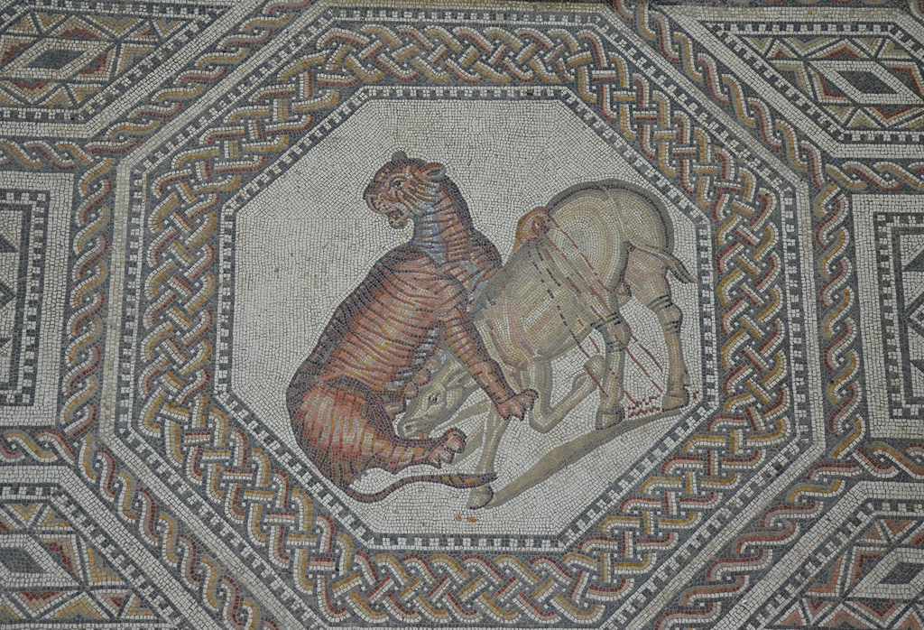 Octagonal medallion depicting a tiger attacking a wild ass. Another variety of venatio consisted of pitting animals against animals. The Romans loved to see large and dangerous animals fighting each other. In this scene, a wild ass, laid low by blows from the tiger's paw, has fallen to the ground. Standing proudly, the victor of this unmatched contest looks around before commencing his bloody feast.