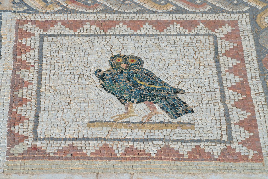 Detail of the Bird Mosaic consisting of a central panel surrounded by 35 small squares representing different species of birds.