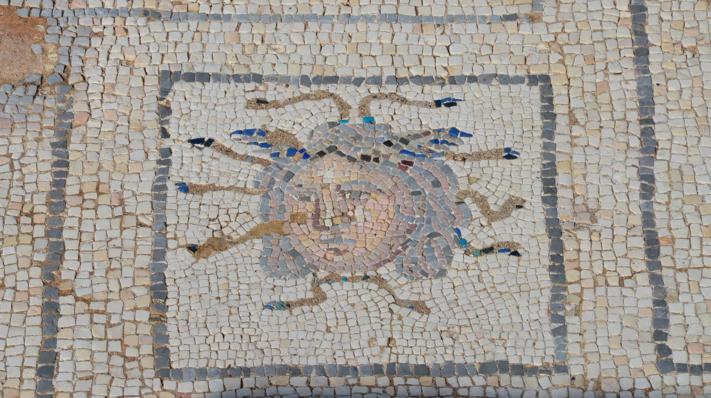 Mosaic detail with head of Medusa in the House of the Birds.